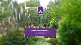 Fantasiereise Sommerabendwiesenduft [Deutsch - Meditation] - Fantasiereisen und mehr