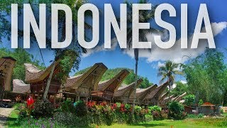 EASY 2 WEEK ITINERARY FOR INDONESIA | Things To Do & See In Indonesia