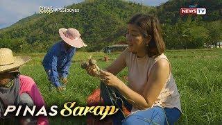 Pinas Sarap: Kara David, sinubukang magsaka ng sibuyas sa Nueva Ecija!