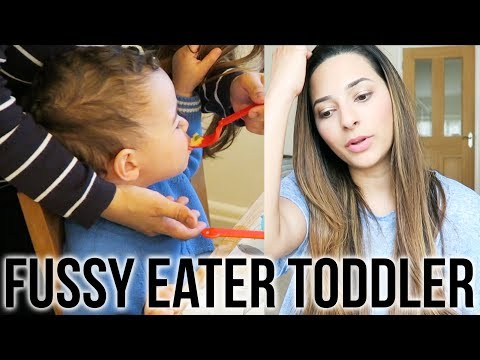 MY TODDLER IS A FUSSY EATER - Let&39;s Talk About It  Ysis Lorenna