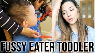 Baixar MY TODDLER IS A FUSSY EATER - Let's Talk About It | Ysis Lorenna