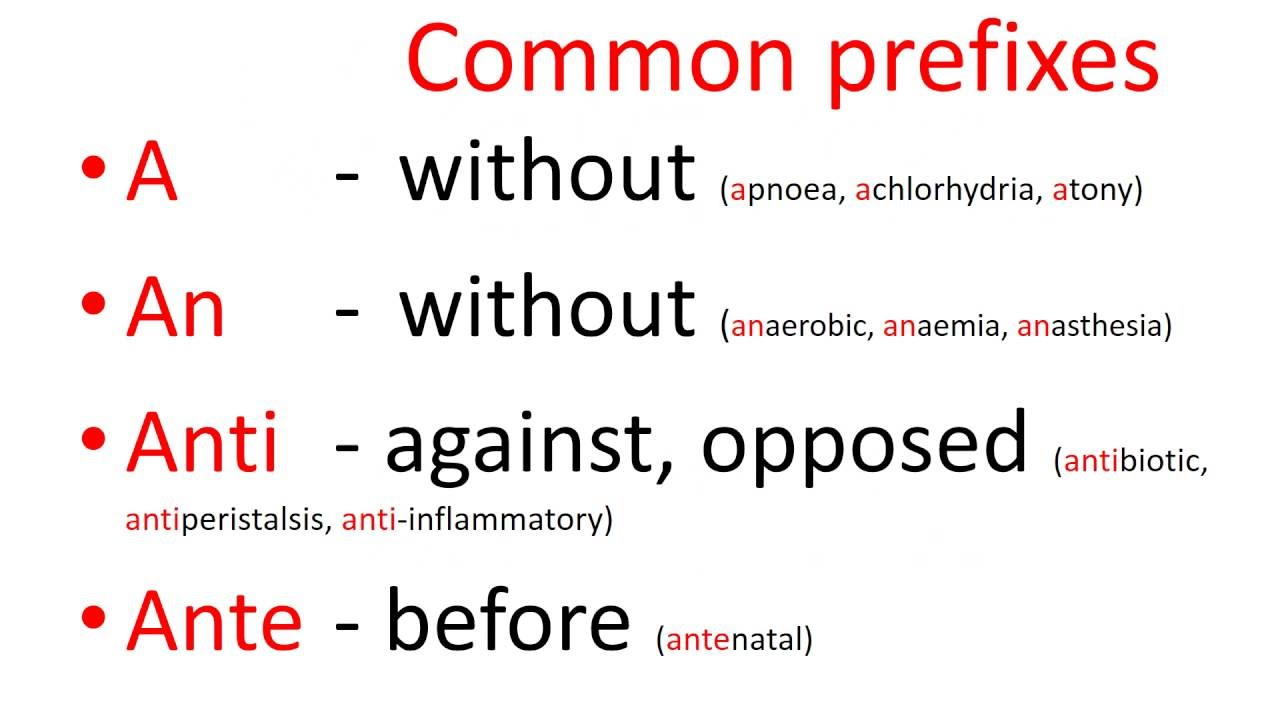 Medical terms - common prefixes - YouTube