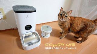 【保護猫活動準備】自動餌やり機& 脚付ウォーターボウル|PETLIBRO|猫壱