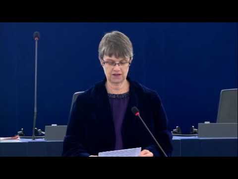 Molly on the Rights of Indigenous People in Brazil - Molly Scott Cato MEP