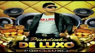 PISADINHA DE LUXO - CD JUNHO 2016 GRAVADO EM PORTEIRAS [CRATO]