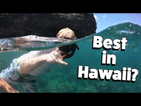 Best Excursion In Hawaii? Capt. Andy's Snorkel BBQ! Na Poli Coast Catamaran Tour- Kauai, Hawaii Vlog