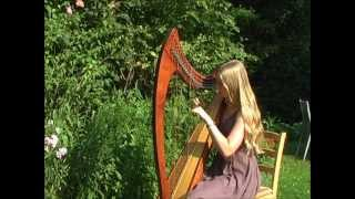 My Immortal - Evanescence on harp