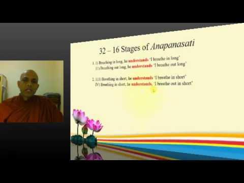 16 Steps of Anapanasati Meditation