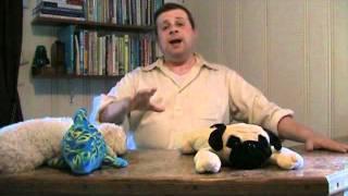 Dog Training - The best age to start dog training