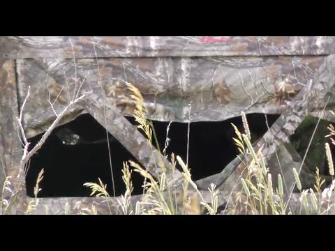 How To Hunt From Ground Blinds