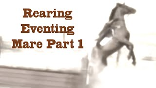 Fixing A Rearing Eventing Mare Part 1