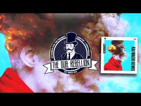 Herobust - WTF (Kai Wachi Remix)