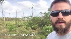 Florida Master Naturalist Program: Uplands Habitat
