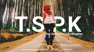 Top Selfie Pinusan Kragilan ( TSPK ) - Pakis | #1 Explore Magelang - Central Java