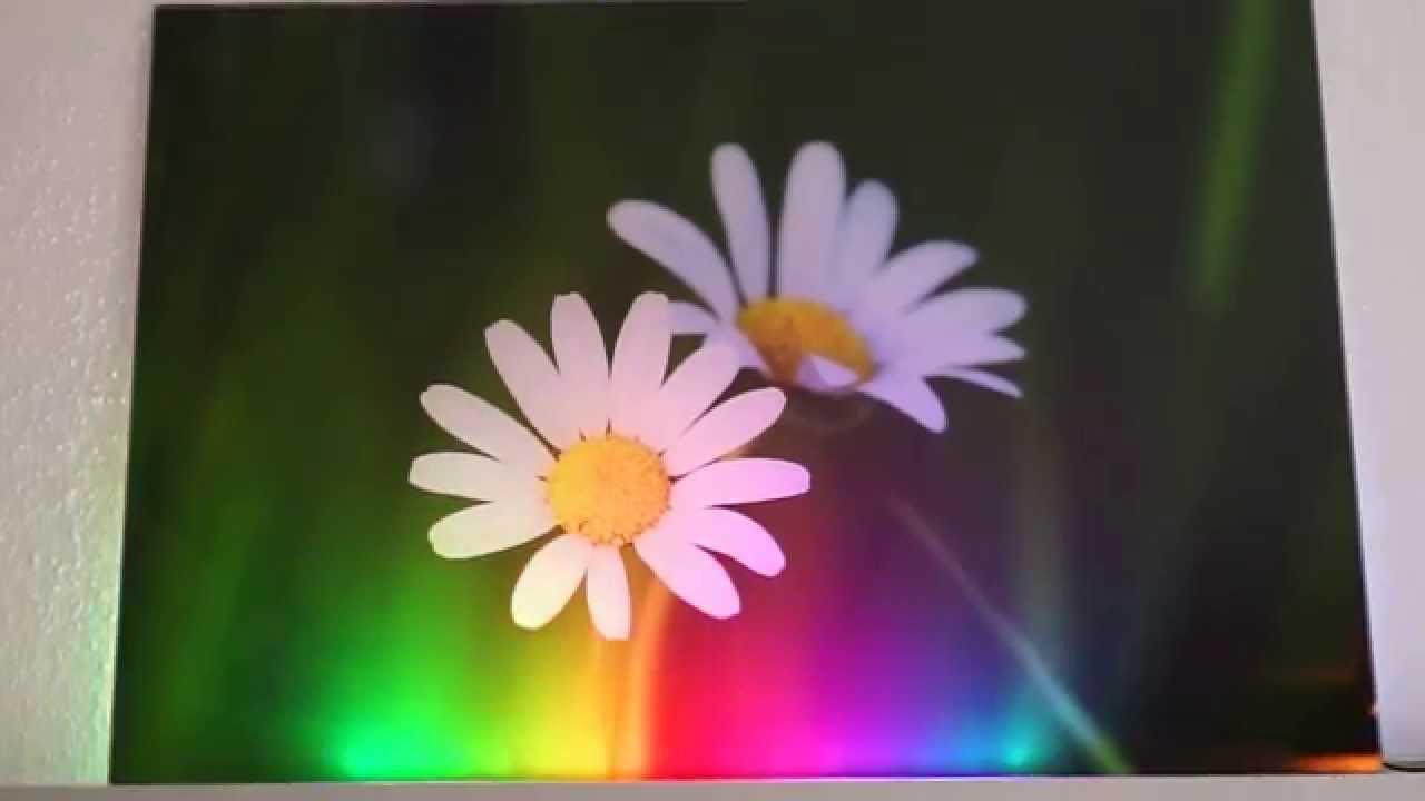 ws2812 acrylglasbild hintergrundbeleuchtung funnydog tv. Black Bedroom Furniture Sets. Home Design Ideas