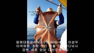서울근교 당일치기 회사워크샵장소 속초 설악산 양양 단체…