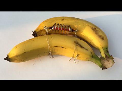 Fishing - How to Hook Banana - Carp bait (12) - Mồi Chuối Câu Cá Chép