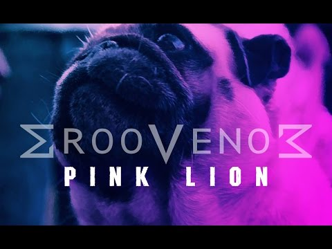 GrooVenoM - Pink Lion (OFFICIAL VIDEO)