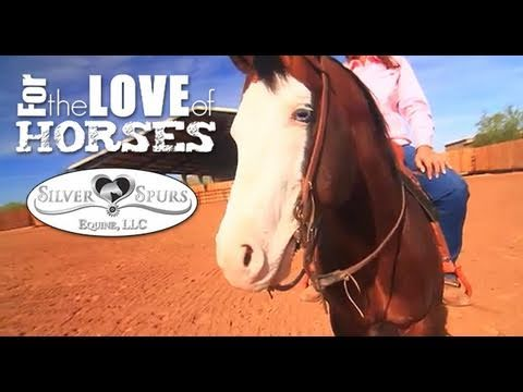 For The Love of Horses - Silver Spurs