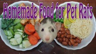 Pet Rat Diet - Requested