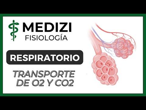 Clase 41 Fisiología Respiratoria - Transporte de O2 y CO2 en la sangre y tejidos