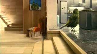 BESTE RECLAME OOIT!!!!! Vogelhuisje Van Binnen
