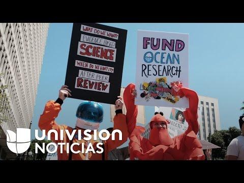 Miles de personas marchan alrededor del mundo para defender la ciencia
