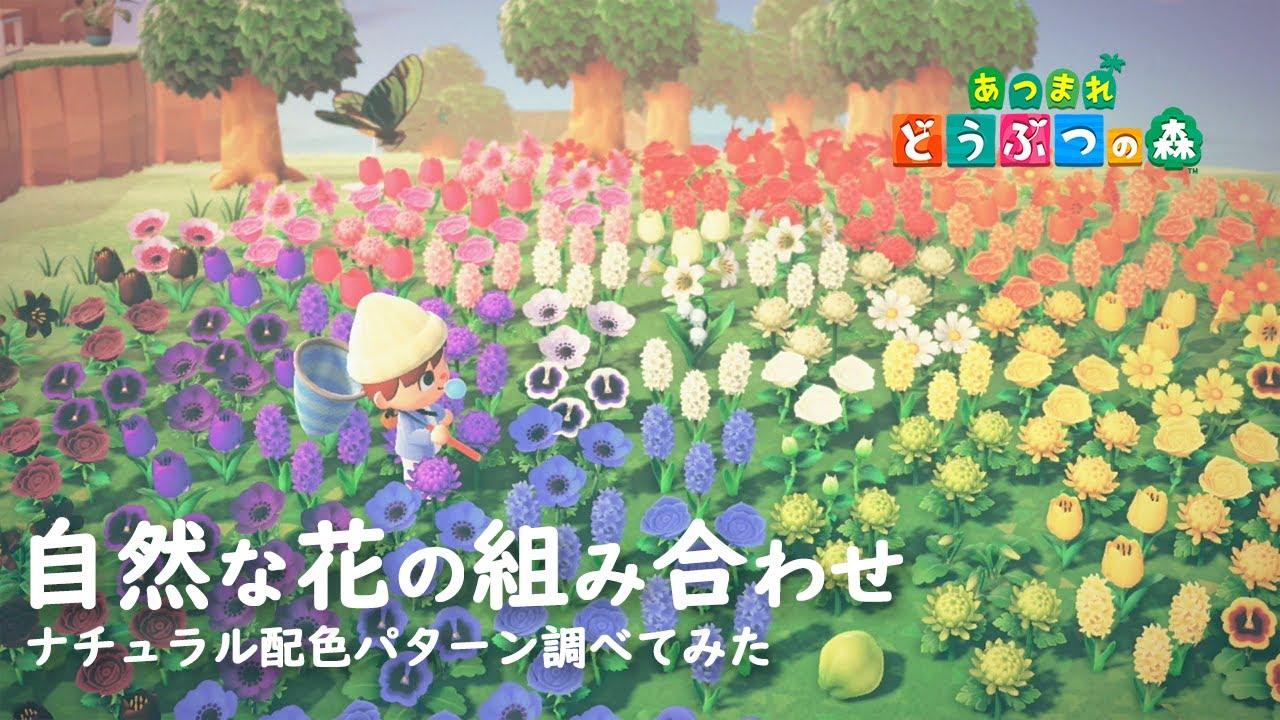花 配置 交配 あつ 森 の