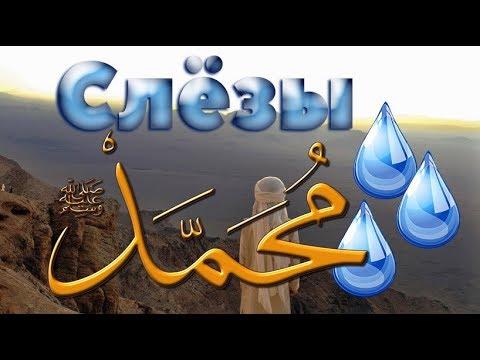 Любимец Всевышнего 11 часть.  Признаки будущего  Пророка  (ﷺ)