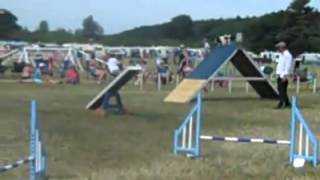 Crufts Team Qualifier Rugby Show Catton Hall
