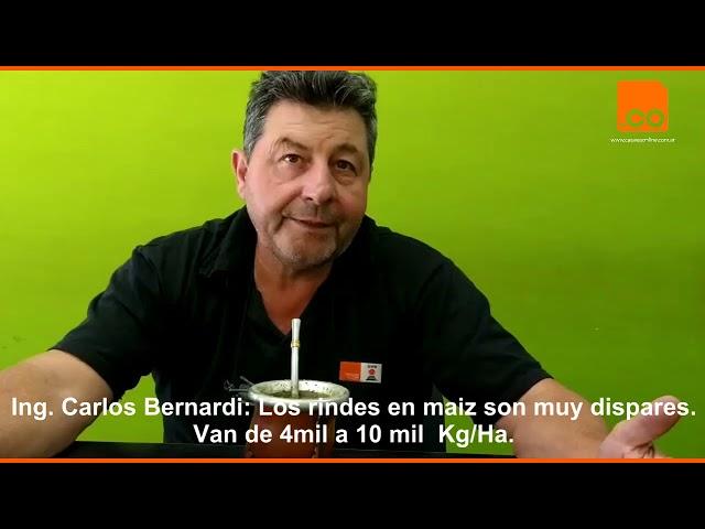 Carlos Bernardi, Maiz 0
