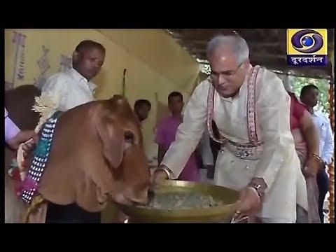 Chhattisgarh ddnews 28 10 19  Twitter @ddnewsraipur