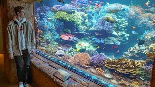 Private Tour of the WORLD'S BEST REEF AQUARIUM! - (Episode 2)
