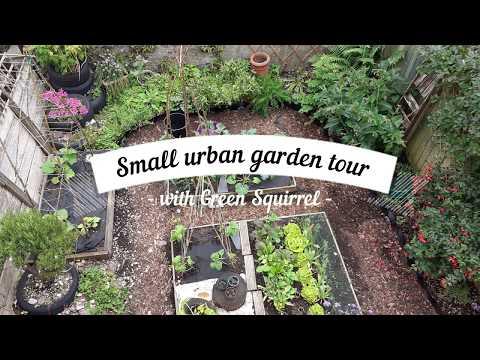 Small Urban Garden tour