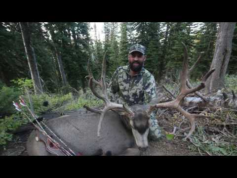 Monster Mule Deer Killed With Traditional Bow