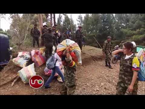 Guerrilleros de las Farc en camino hacia sus últimos campamentos