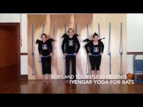 iyengar yoga for bats  youtube