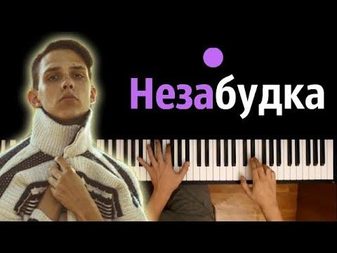 Тима Белорусских - Незабудка ● караоке   PIANO_KARAOKE ● + НОТЫ & MIDI