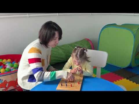 Диагностика развития ребенка раннего возраста. Методика Векслера детский тест Дома животных