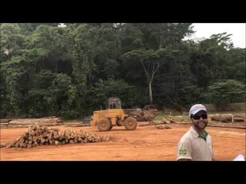 Teak Milling Operation In Brazil