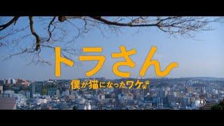 映画『トラさん~僕が猫になったワケ~』 2019年2月15日(金)全国ロー...