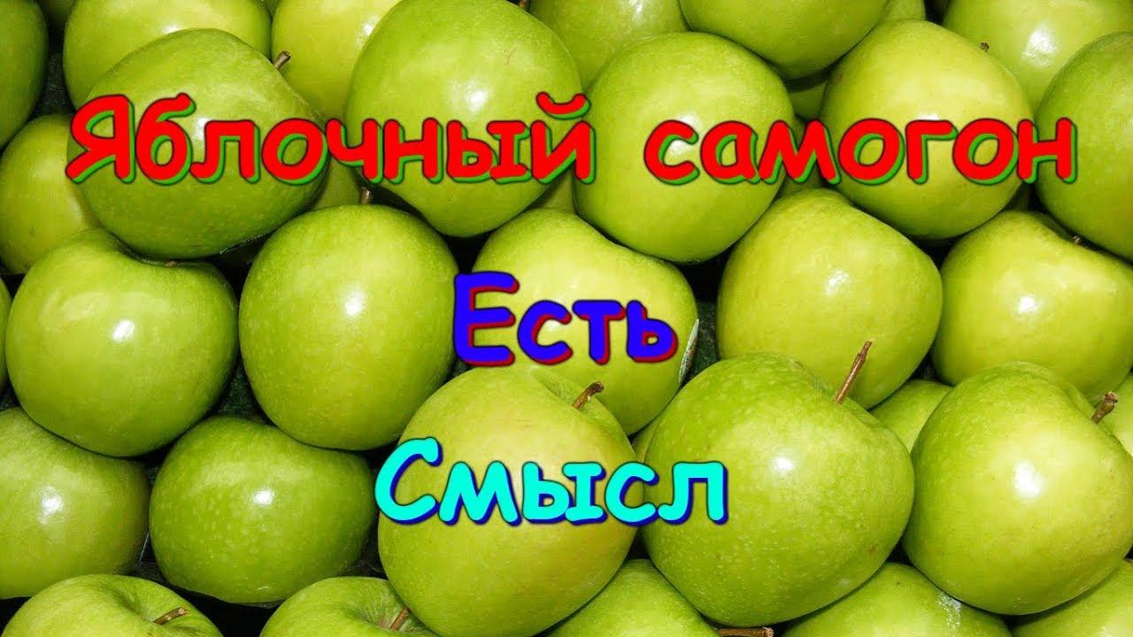 Правильный самогон из яблок — рецепты браги и перегонка