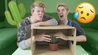 What's in the box?! *GEVAARLIJK*