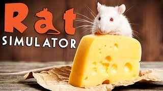 Rat Simulator - Eat Cheese, Infect People? - Rat Simulator Gameplay Highlights