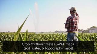 CropPro Consulting is Revolutionizing Farming - SaskTel Business