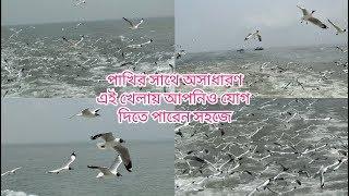 বরিশালে ওয়াটার বাসে যেতে হাজার হাজার পাখির মেলা  || journey by water bus || Bangla vlog