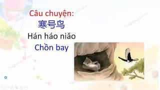 Học tiếng Trung qua sách ngữ văn lớp 2 của  Trung Quốc - Tập 17 - Chồn bay 寒号鸟
