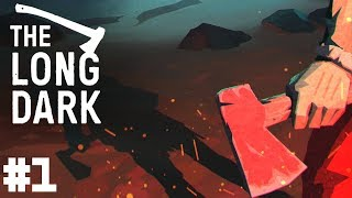 THE LONG DARK PL FABUŁA ODC.1 GAMEPLAY PO POLSKU