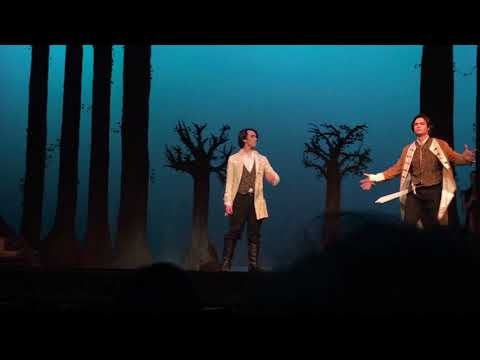 TDHS into the woods-agony