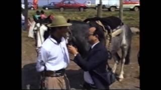Nota a Gauchos argentinos a caballo hasta New York, año 1993